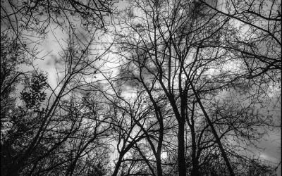 48_Alla ricerca di un nuovo paesaggio